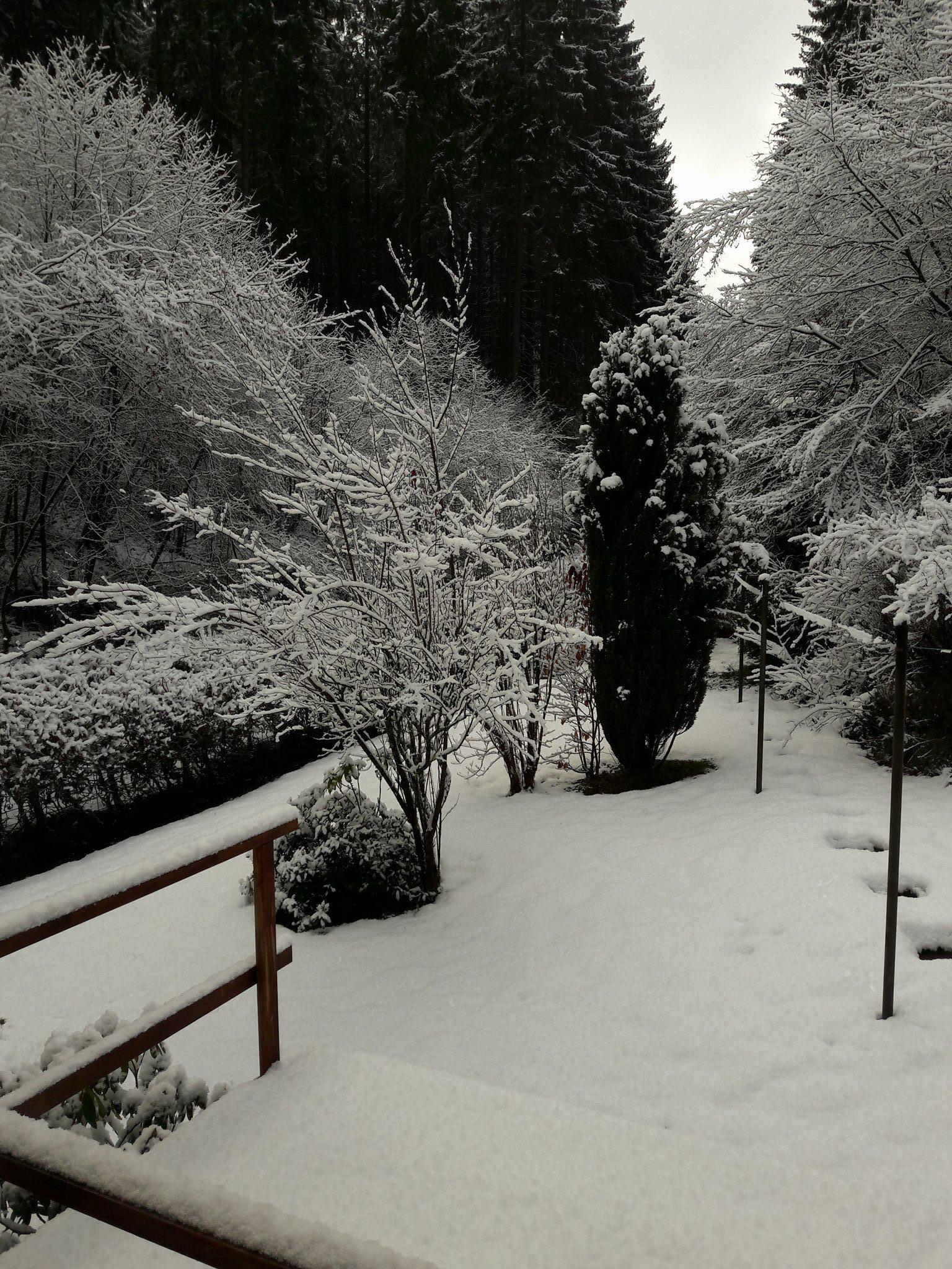 15 Tuin winter